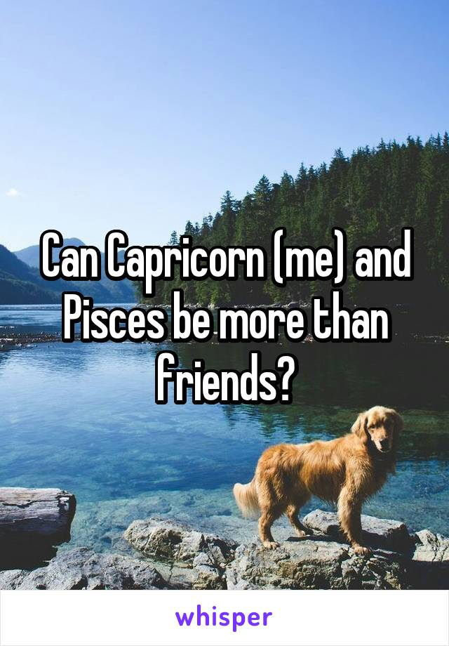 Can Capricorn (me) and Pisces be more than friends?
