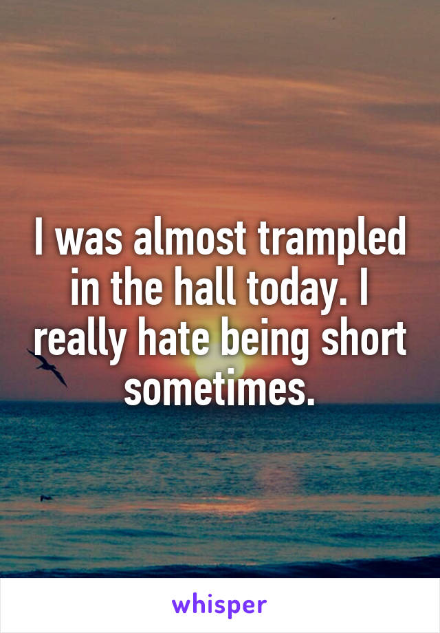 I was almost trampled in the hall today. I really hate being short sometimes.