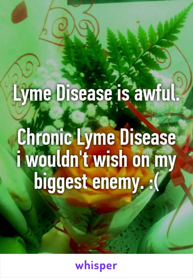 Lyme Disease is awful.  Chronic Lyme Disease i wouldn't wish on my biggest enemy. :(