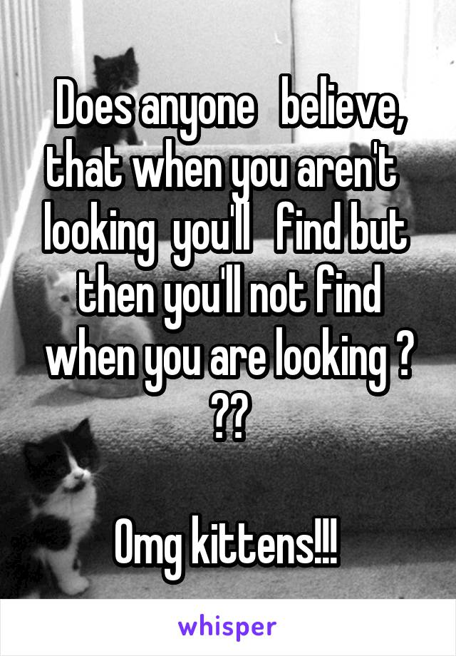 Does anyone   believe, that when you aren't   looking  you'll   find but  then you'll not find when you are looking ? ??  Omg kittens!!!