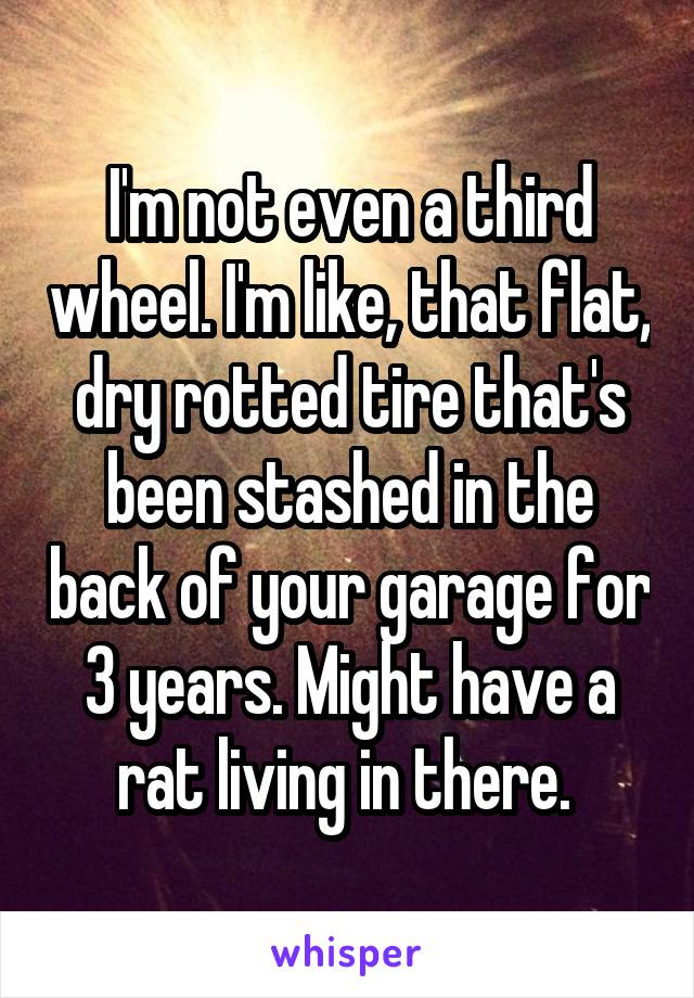 I'm not even a third wheel. I'm like, that flat, dry rotted tire that's been stashed in the back of your garage for 3 years. Might have a rat living in there.