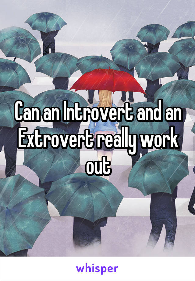 Can an Introvert and an Extrovert really work out