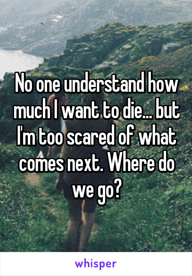 No one understand how much I want to die... but I'm too scared of what comes next. Where do we go?