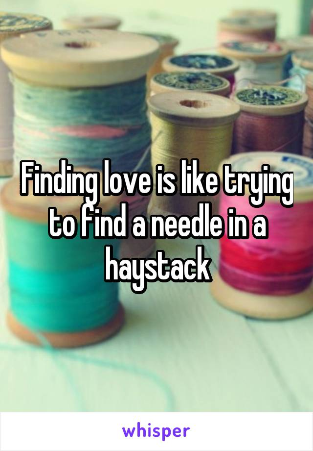 Finding love is like trying to find a needle in a haystack