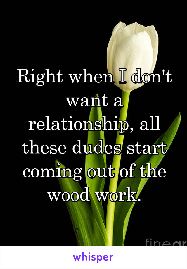 Right when I don't want a relationship, all these dudes start coming out of the wood work.