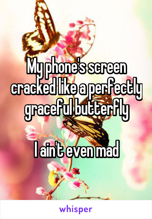 My phone's screen cracked like a perfectly graceful butterfly  I ain't even mad