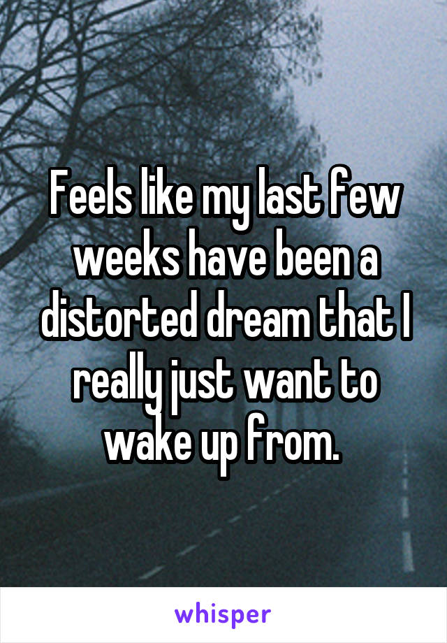 Feels like my last few weeks have been a distorted dream that I really just want to wake up from.