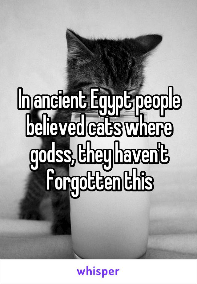 In ancient Egypt people believed cats where godss, they haven't forgotten this
