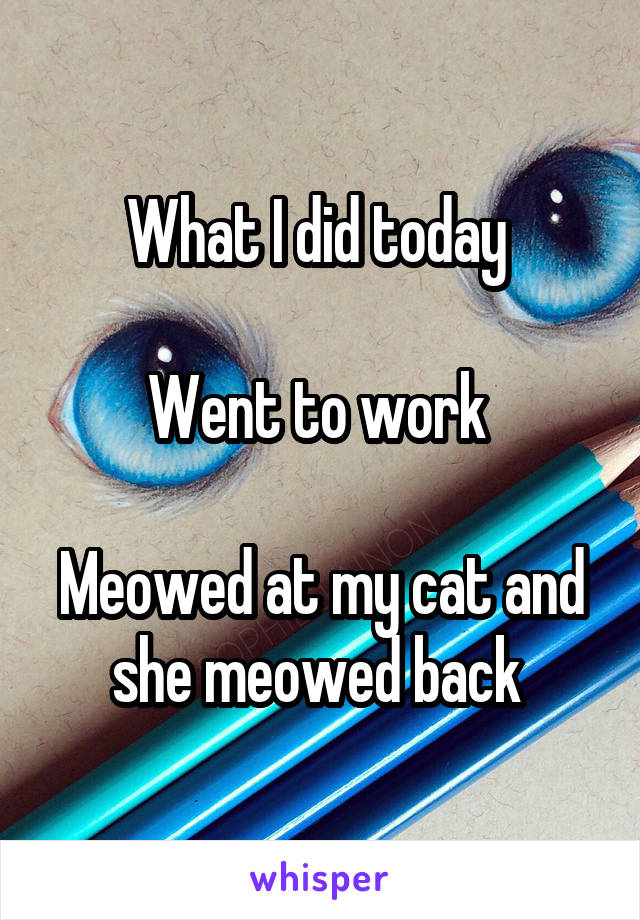 What I did today   Went to work   Meowed at my cat and she meowed back