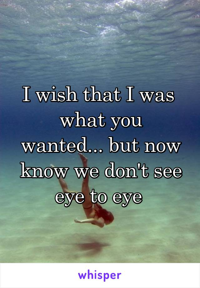 I wish that I was  what you wanted... but now know we don't see eye to eye