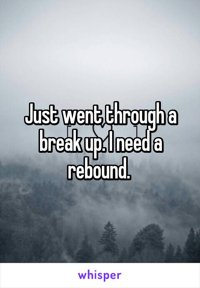 Just went through a break up. I need a rebound.