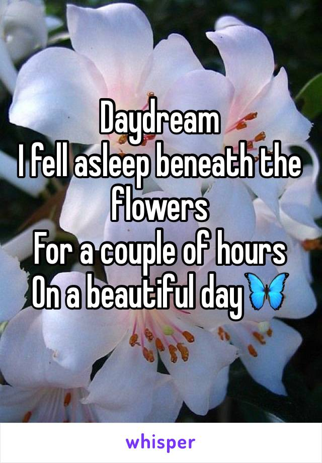Daydream I fell asleep beneath the flowers For a couple of hours On a beautiful day🦋