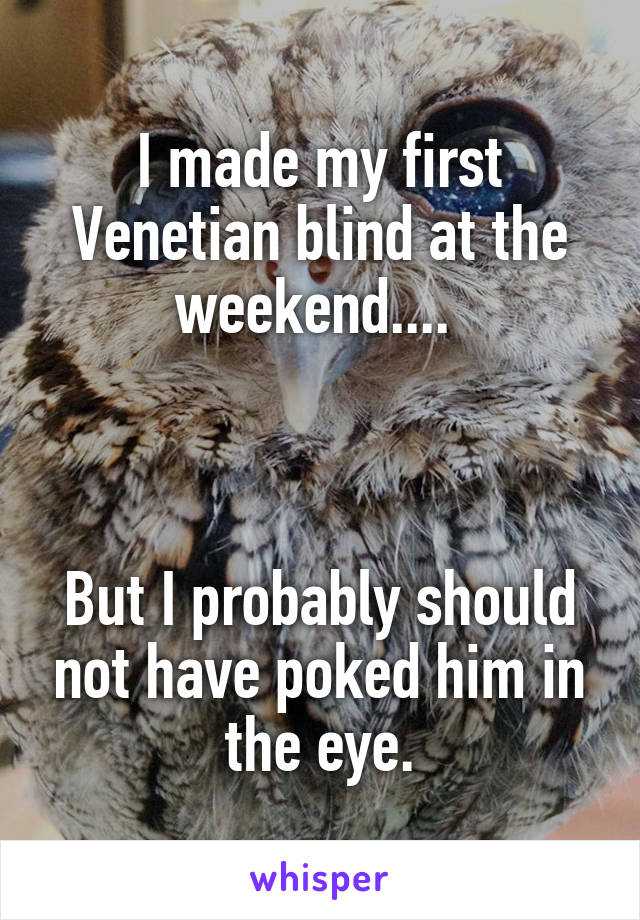 I made my first Venetian blind at the weekend....     But I probably should not have poked him in the eye.