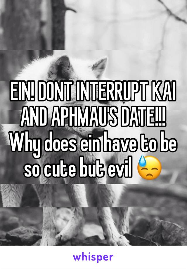 EIN! DONT INTERRUPT KAI AND APHMAU'S DATE!!! Why does ein have to be so cute but evil 😓