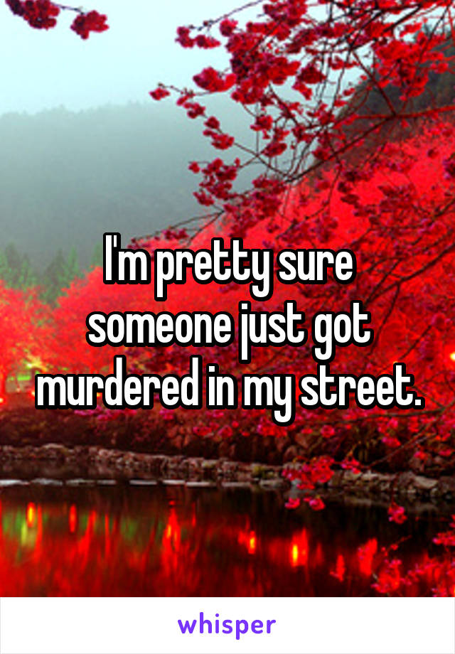 I'm pretty sure someone just got murdered in my street.