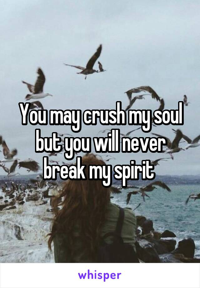 You may crush my soul but you will never break my spirit
