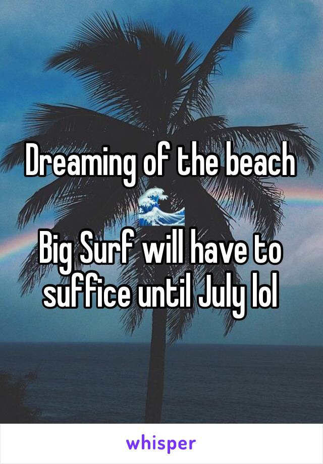 Dreaming of the beach 🌊  Big Surf will have to suffice until July lol