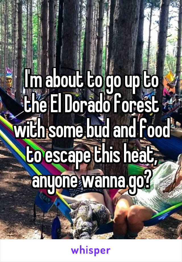 I'm about to go up to the El Dorado forest with some bud and food to escape this heat, anyone wanna go?