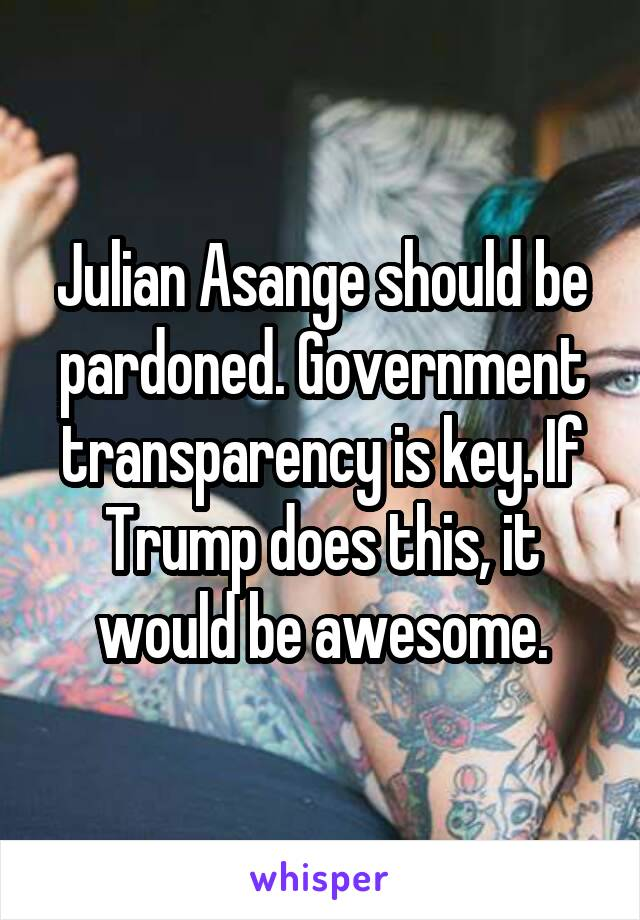 Julian Asange should be pardoned. Government transparency is key. If Trump does this, it would be awesome.