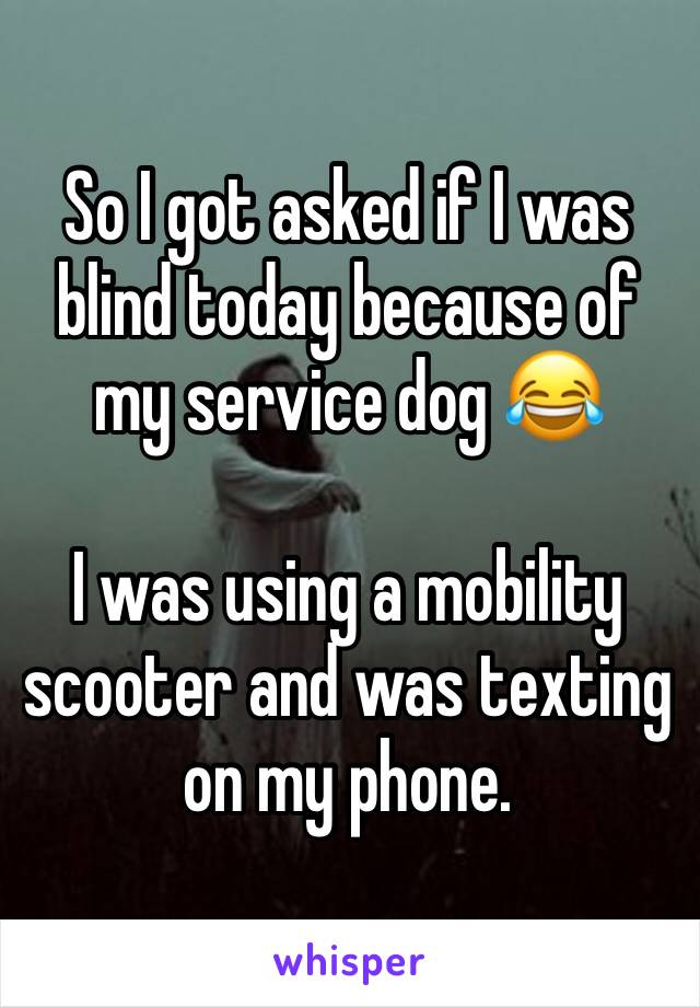 So I got asked if I was blind today because of my service dog 😂  I was using a mobility scooter and was texting on my phone.