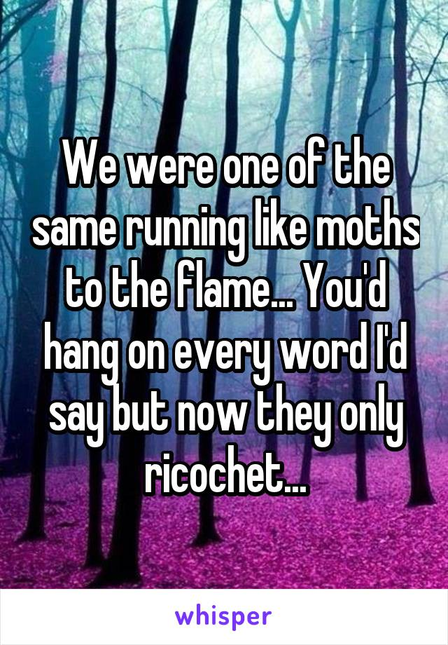 We were one of the same running like moths to the flame... You'd hang on every word I'd say but now they only ricochet...