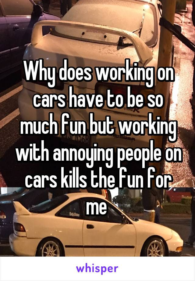 Why does working on cars have to be so much fun but working with annoying people on cars kills the fun for me