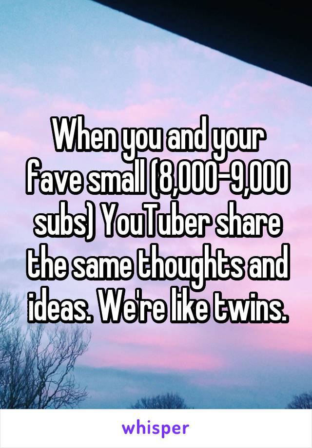 When you and your fave small (8,000-9,000 subs) YouTuber share the same thoughts and ideas. We're like twins.