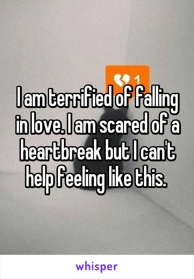 I am terrified of falling in love. I am scared of a heartbreak but I can't help feeling like this.