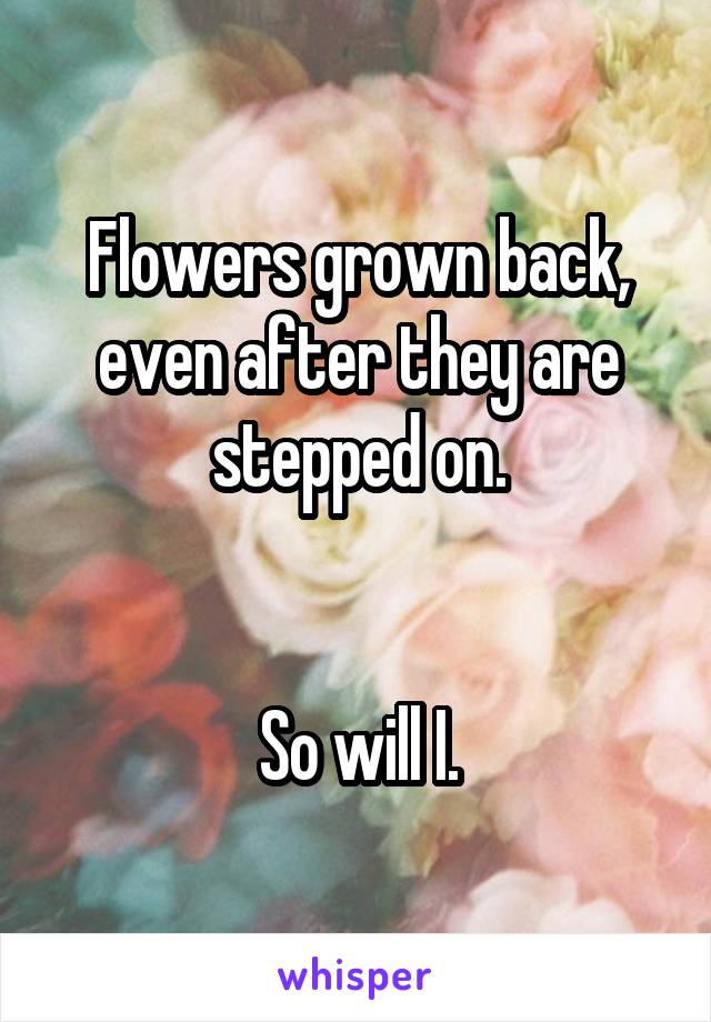 Flowers grown back, even after they are stepped on.   So will I.