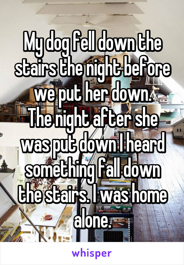 My dog fell down the stairs the night before we put her down. The night after she was put down I heard something fall down the stairs. I was home alone.