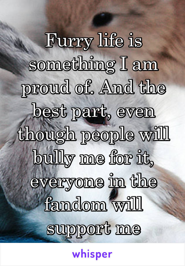 Furry life is something I am proud of. And the best part, even though people will bully me for it, everyone in the fandom will support me