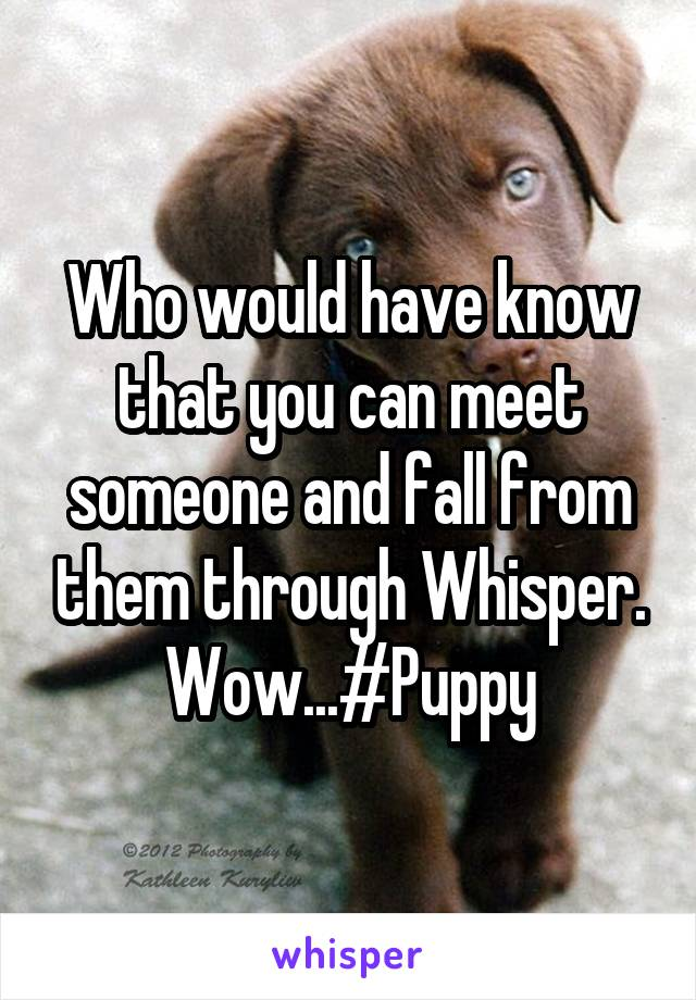 Who would have know that you can meet someone and fall from them through Whisper. Wow...#Puppy