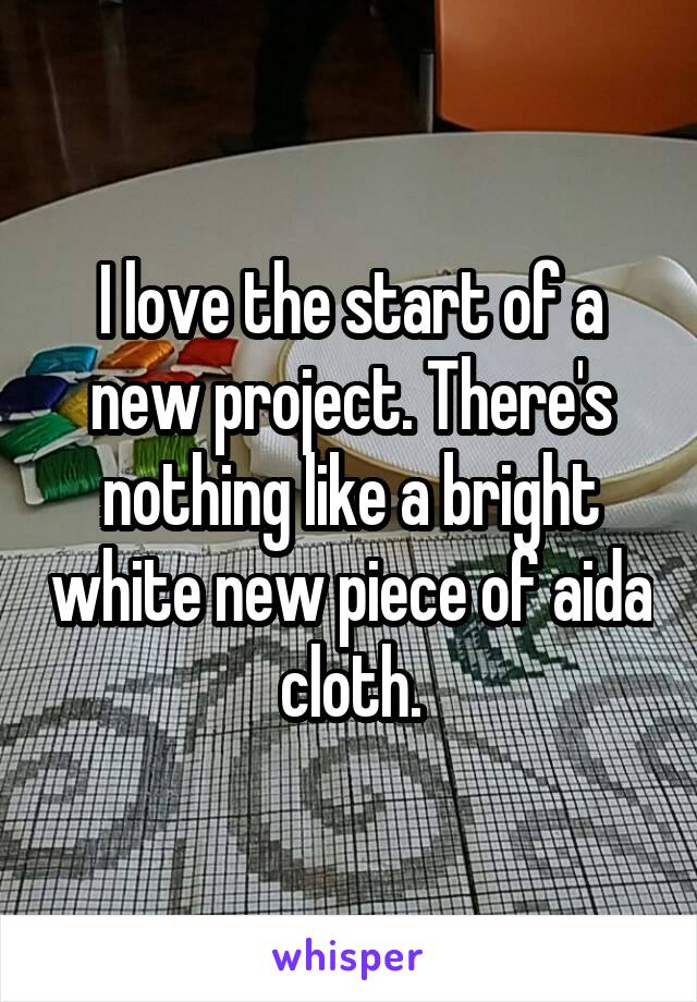 I love the start of a new project. There's nothing like a bright white new piece of aida cloth.