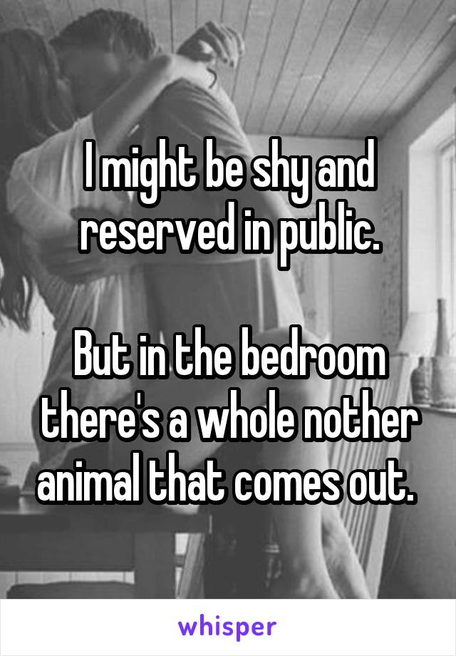 I might be shy and reserved in public.  But in the bedroom there's a whole nother animal that comes out.