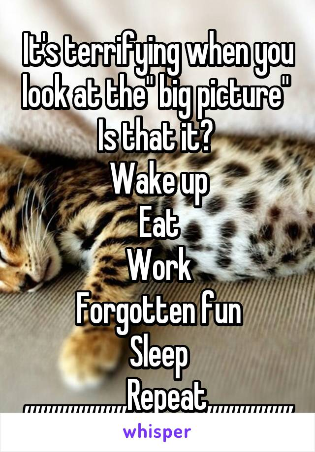 """It's terrifying when you look at the"""" big picture""""  Is that it?  Wake up Eat Work Forgotten fun Sleep ,,,,,,,,,,,,,,,,,,,Repeat,,,,,,,,,,,,,,,,"""
