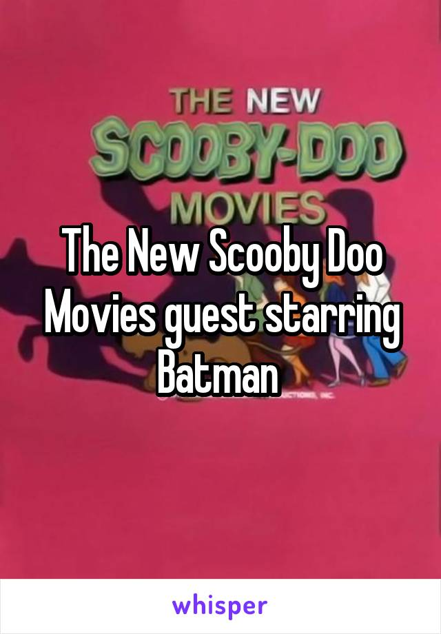 The New Scooby Doo Movies guest starring Batman