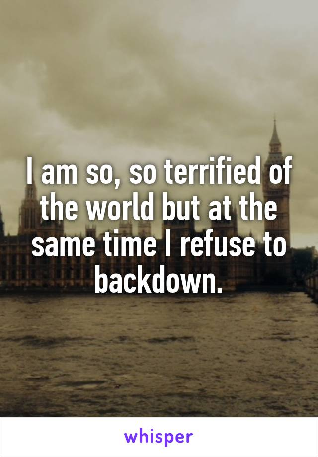 I am so, so terrified of the world but at the same time I refuse to backdown.