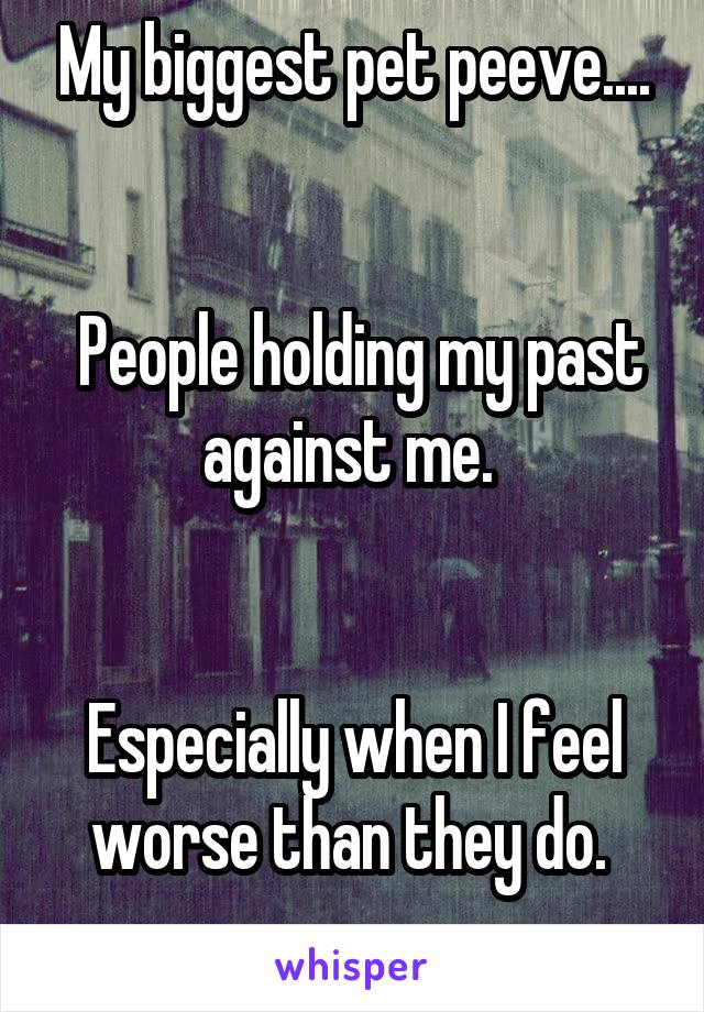My biggest pet peeve....    People holding my past against me.    Especially when I feel worse than they do.