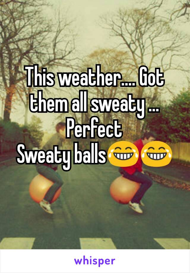 This weather.... Got them all sweaty ... Perfect Sweaty balls😂😂