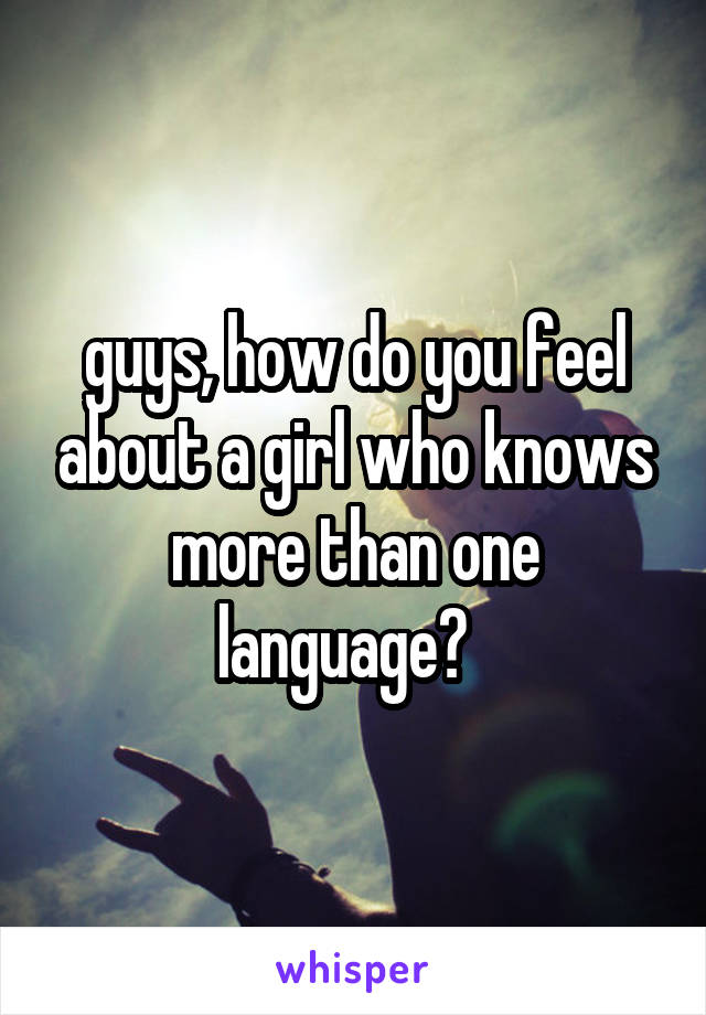 guys, how do you feel about a girl who knows more than one language?