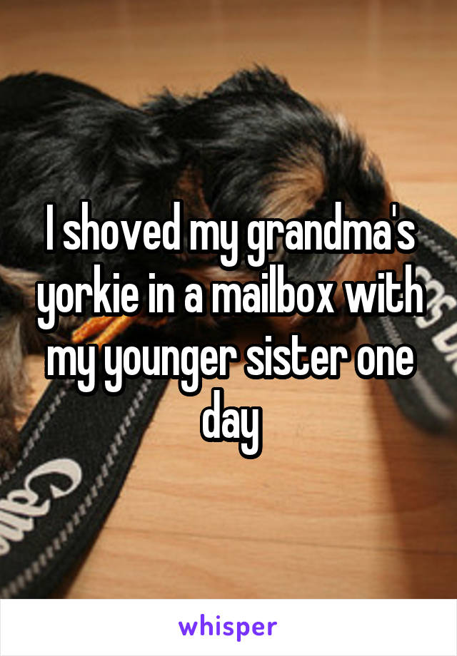 I shoved my grandma's yorkie in a mailbox with my younger sister one day