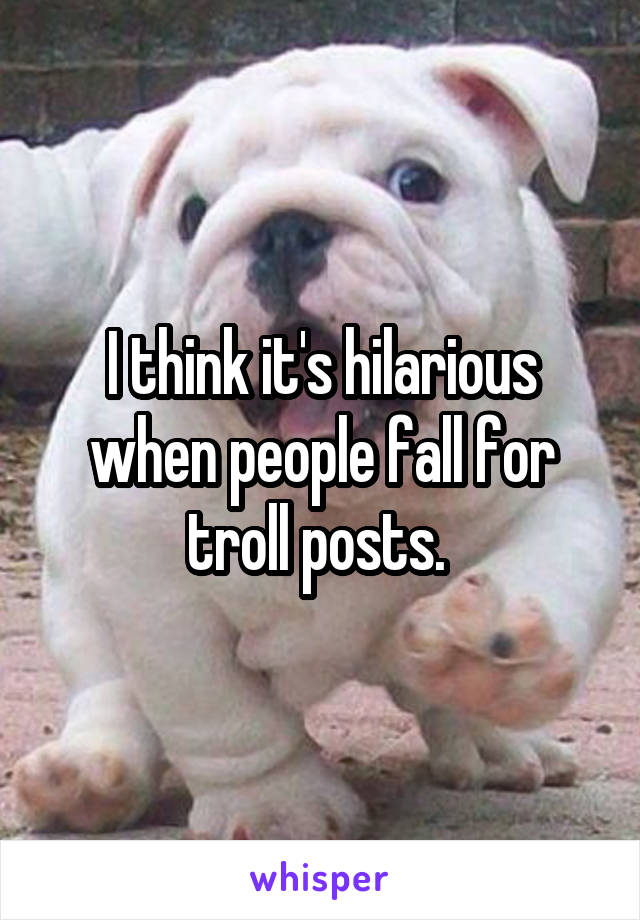 I think it's hilarious when people fall for troll posts.