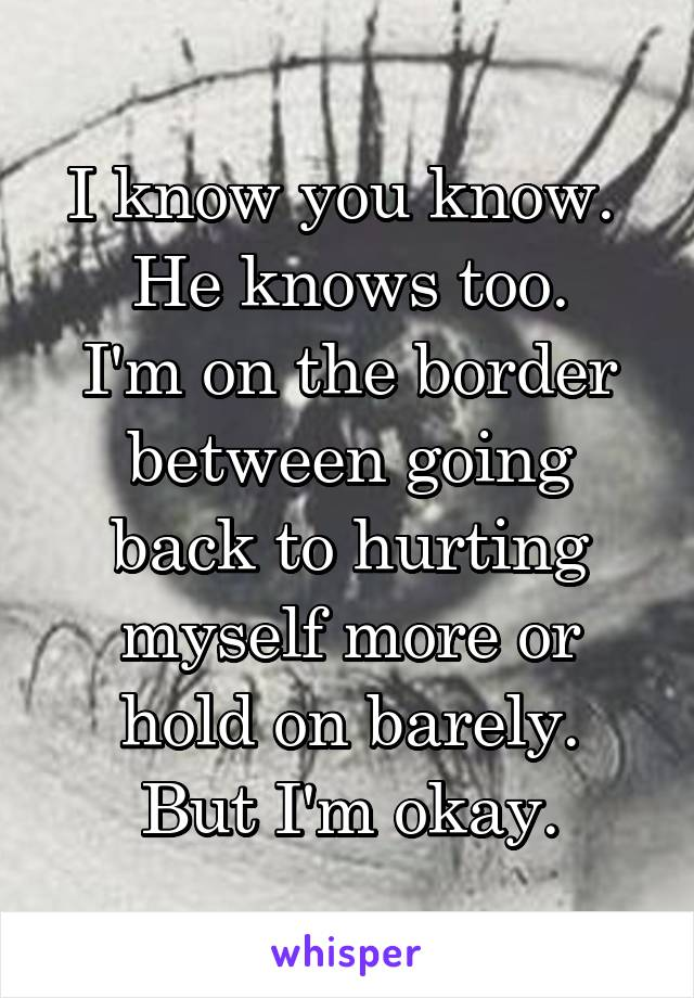 I know you know.  He knows too. I'm on the border between going back to hurting myself more or hold on barely. But I'm okay.