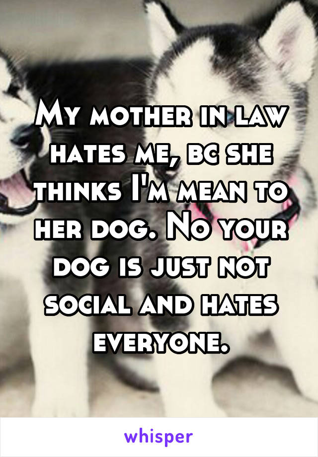 My mother in law hates me, bc she thinks I'm mean to her dog. No your dog is just not social and hates everyone.
