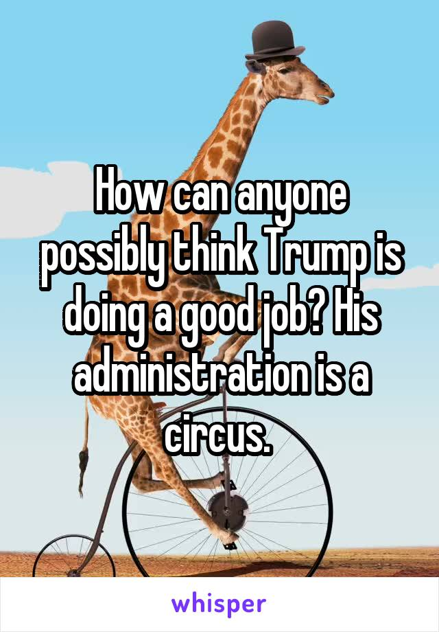 How can anyone possibly think Trump is doing a good job? His administration is a circus.