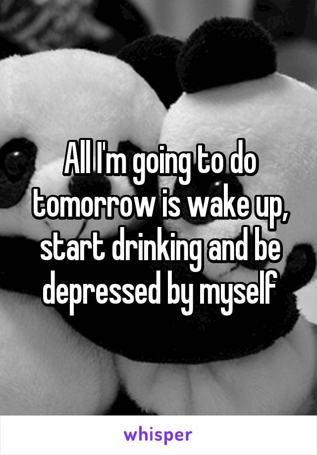 All I'm going to do tomorrow is wake up, start drinking and be depressed by myself