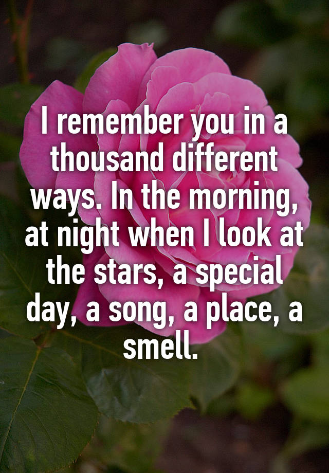 I Remember You In A Thousand Different Ways The Morning At Night When Look Stars Special Day Song Place Smell