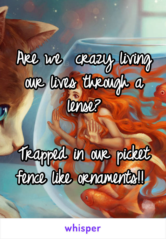 Are we  crazy living our lives through a lense?  Trapped in our picket fence like ornaments!!