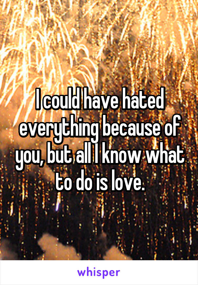 I could have hated everything because of you, but all I know what to do is love.