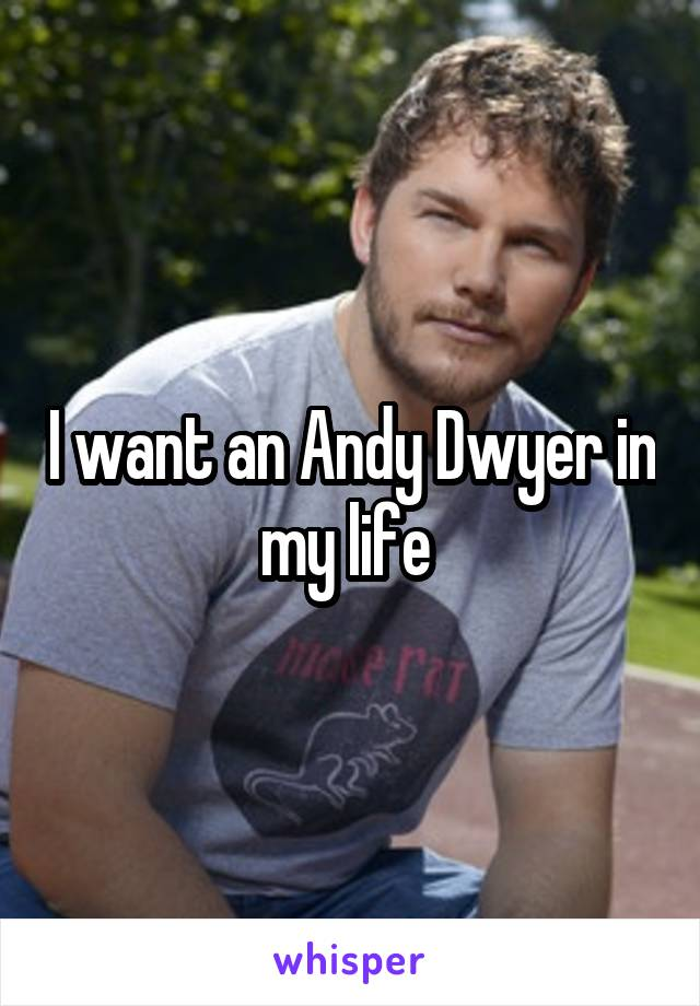 I want an Andy Dwyer in my life